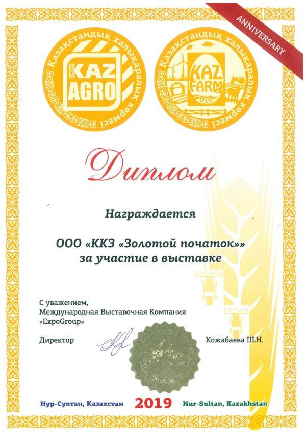 Диплом 2019 Казахстан